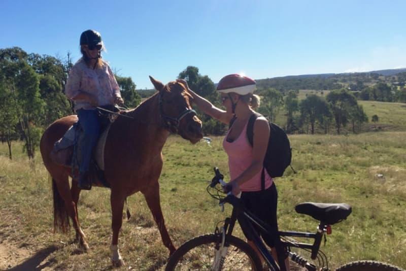 horsebike