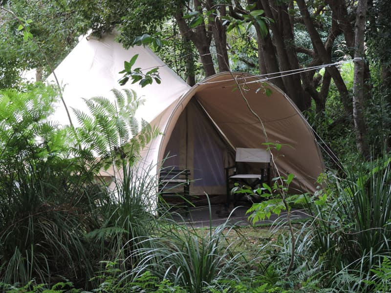 Glamping tent 5.0m front view by creek (1)